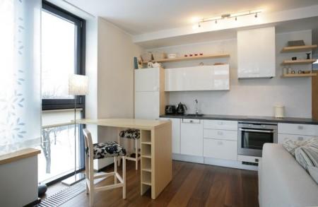 köögimööbel-suur-köök-väikses-korteris