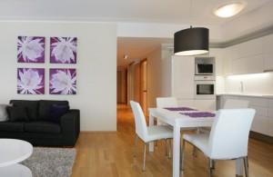 korter-pärnus-elutuba-köök